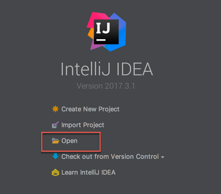 IntelliJ IDEA Open Project