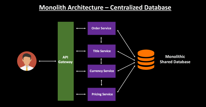 Monolith Centralized Database